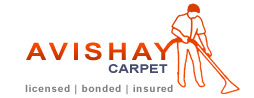 Avishay Carpet Cleaning, Upholstery and More...